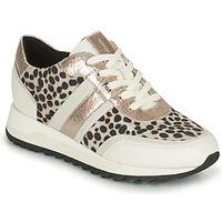 Zapatos Mujer Zapatillas bajas Geox TABELYA Blanco / Negro / Plata