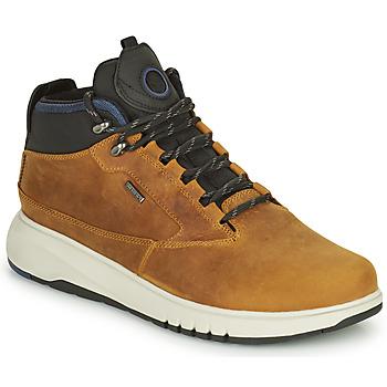 Zapatos Hombre Botas de caña baja Geox AERANTIS Camel