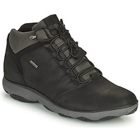 Zapatos Hombre Botas de caña baja Geox NEBULA Negro