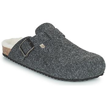 Zapatos Mujer Pantuflas Geox BRIONIA Gris