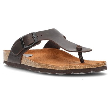 Zapatos Mujer Chanclas Interbios S  DAYIS PEREAS MOKA