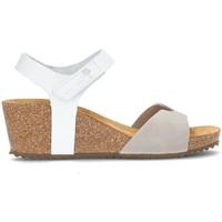 Zapatos Mujer Sandalias Interbios S  5649 GRIS