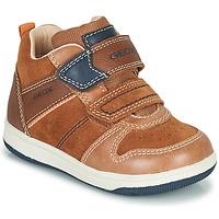 Zapatos Niño Zapatillas altas Geox NEW FLICK Marrón