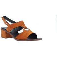 Zapatos Mujer Sandalias Plumers Sandalias Casual con Tacón Mujer de  3370 Multicolor