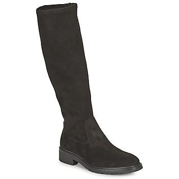 Zapatos Mujer Botas urbanas Unisa EDANA Negro