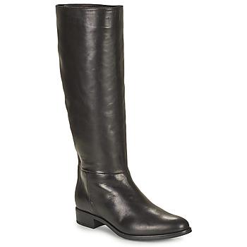 Zapatos Mujer Botas urbanas Unisa BLEND Negro