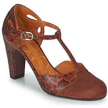 Zapatos Mujer Zapatos de tacón Chie Mihara KUNA Marrón