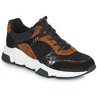 Zapatos Mujer Zapatillas bajas Regard KENO Negro / Marrón