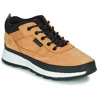 Zapatos Niños Zapatillas altas Timberland FIELD TREKKER LOW Trigo