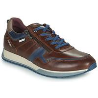 Zapatos Hombre Zapatillas bajas Pikolinos CAMBIL Marrón / Azul