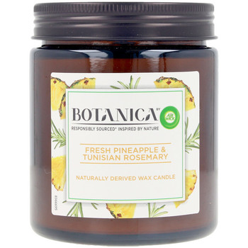 Casa Velas, aromas Air-Wick Botanica Vela Pineapple & Tunisian Rosemary 205 Gr