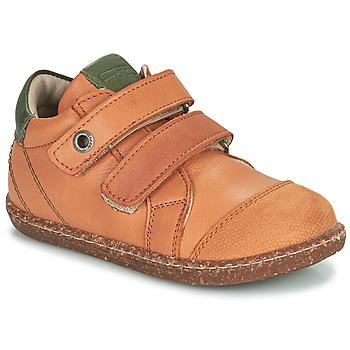 Zapatos Niño Zapatillas altas Aster WASHAN Camel / Verde