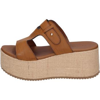 Zapatos Mujer Zuecos (Mules) Sara Collection BJ923 Marrón