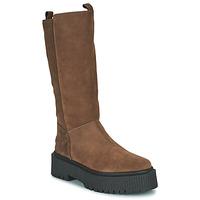 Zapatos Mujer Botas urbanas Musse & Cloud BARBIS Marrón
