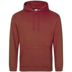 textil Sudaderas Awdis College Rojo/Óxido