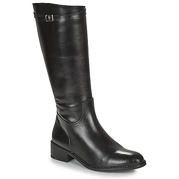 Zapatos Mujer Botas urbanas Dorking MARA Negro
