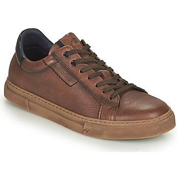 Zapatos Hombre Zapatillas bajas Fluchos NIKO Marrón