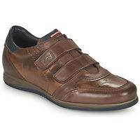 Zapatos Hombre Zapatillas bajas Fluchos DANIEL Marrón