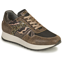 Zapatos Mujer Zapatillas bajas NeroGiardini AVOCATO Kaki / Leopardo