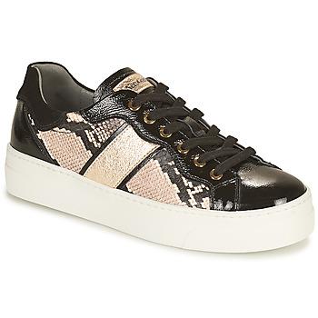 Zapatos Mujer Zapatillas bajas NeroGiardini BETTO Negro / Oro