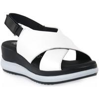 Zapatos Mujer Sandalias Pepe Menargues TRIPOLI BIANCO Bianco