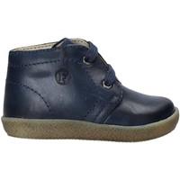 Zapatos Niños Botas de caña baja Falcotto 2012821 51 Azul