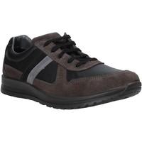Zapatos Hombre Zapatillas bajas Melluso U15432E Gris