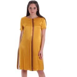 textil Mujer Vestidos cortos Café Noir JA6260 Amarillo