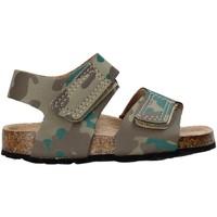 Zapatos Niños Sandalias Balducci AG-1558 Marrón