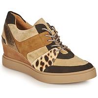 Zapatos Mujer Zapatillas bajas Mam'Zelle PERRY Beige / Negro / Leopardo