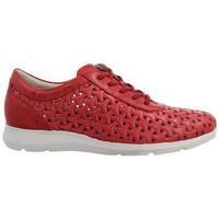 Zapatos Mujer Derbie & Richelieu Pitillos 6731 Rojo