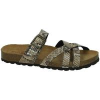 Zapatos Mujer Sandalias Biobio Sandalias bio bio BEIG