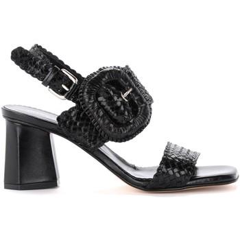 Zapatos Mujer Sandalias Pon´s Quintana Sandalia con tacón Bristol de piel entrelazada negra Negro