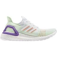 Zapatos Niño Running / trail adidas Originals  Blanco