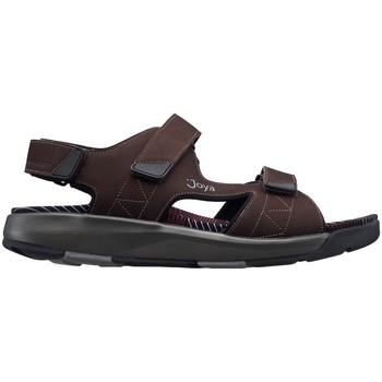 Zapatos Hombre Sandalias Joya S  ALEXANDER DARK_BROWN