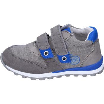 Zapatos Niño Zapatillas bajas Enrico Coveri BJ975 Gris