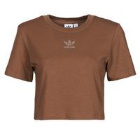 textil Mujer Camisetas manga corta adidas Originals CROPPED  TEE Marrón