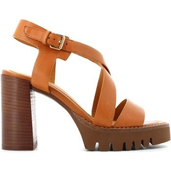 Zapatos Mujer Sandalias Elvio Zanon EN0902X Otros