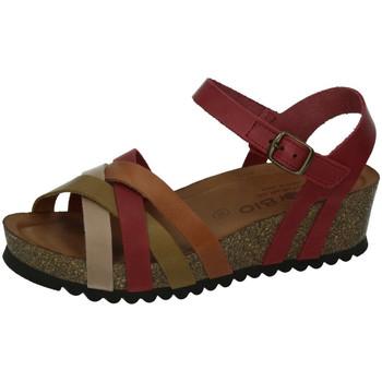Zapatos Mujer Sandalias Biobio Sandalias ROJO