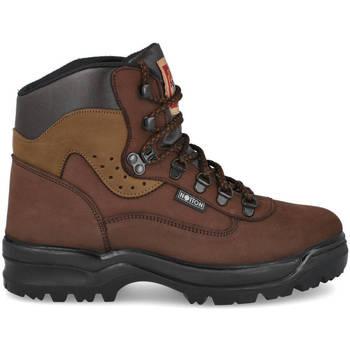 Zapatos Hombre Botas de caña baja Notton 710 MARRON