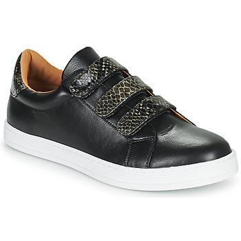 Zapatos Mujer Zapatillas bajas Moony Mood POLINE Negro
