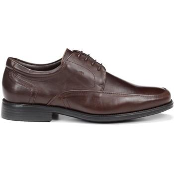 Zapatos Hombre Derbie Fluchos 7995 MALLORCA RAFAEL CAFE