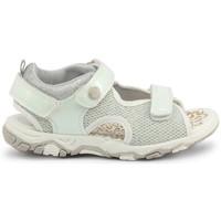 Zapatos Niños Sandalias Shone - 1638-035 Blanco