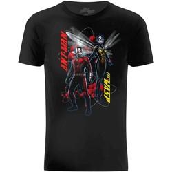 textil Hombre Camisetas manga corta Ant-Man  Negro