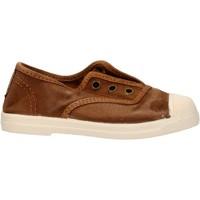 Zapatos Niño Zapatillas bajas Natural World - Scarpa elast marrone 470E-686 MARRONE