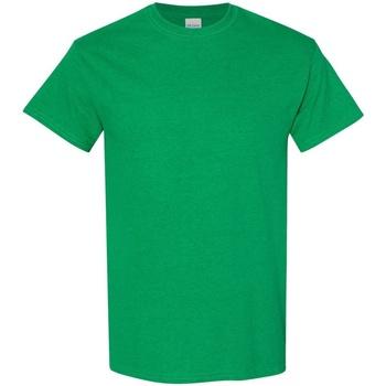 textil Hombre Camisetas manga corta Gildan 5000 Verde Irlandés Antique
