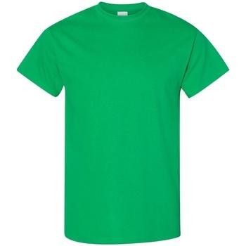 textil Hombre Camisetas manga corta Gildan 5000 Verde Irlandés