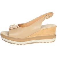 Zapatos Mujer Sandalias Repo 20428-E1 Beige