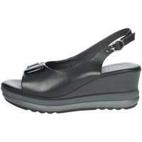Zapatos Mujer Sandalias Repo 20428-E1 Negro