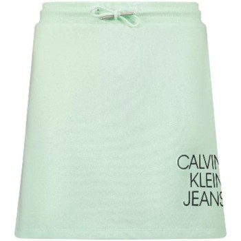 textil Niña Vestidos Calvin Klein Jeans IG0IG00990 LZY Verde